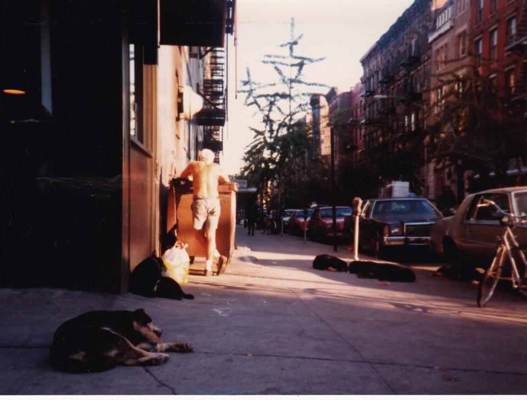 LAZY DAYS...stray dogs lie around in East Village street in 1986