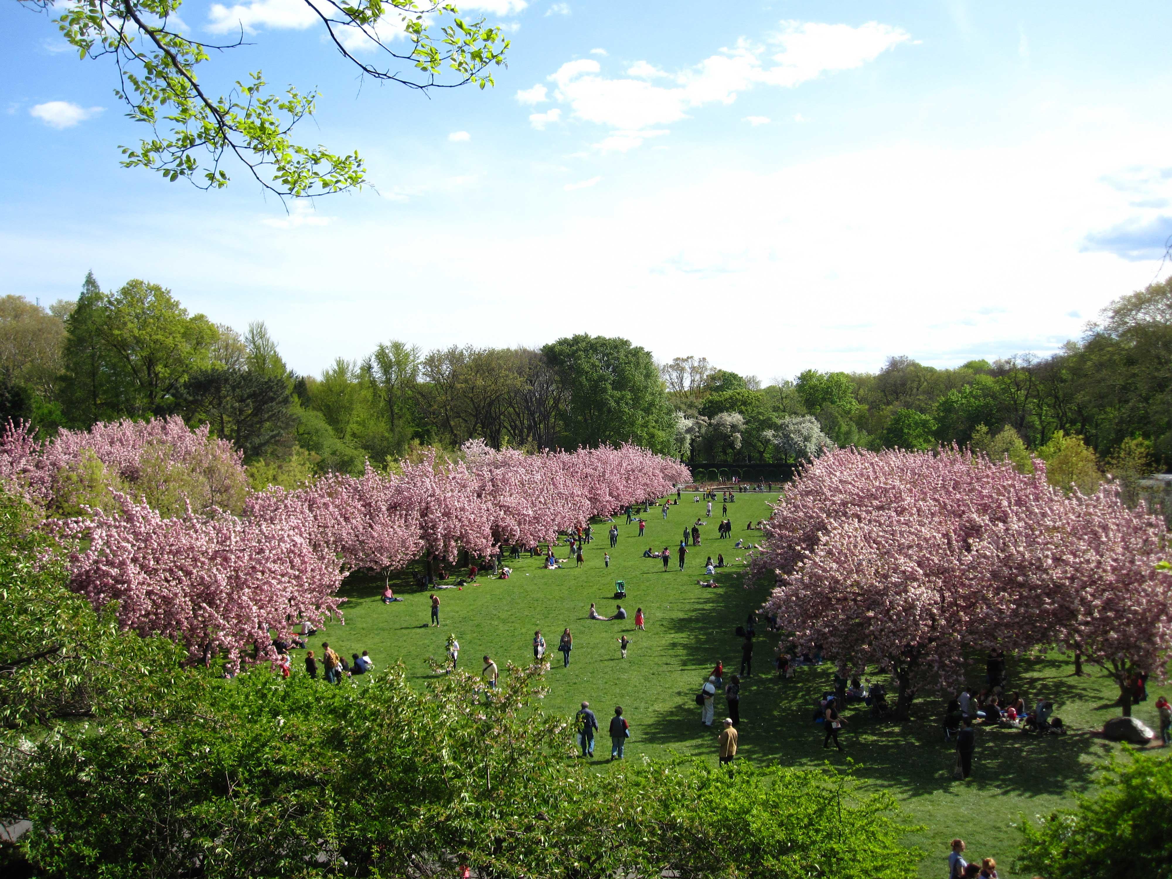 Top New York vintage and boho spring spots Boo York City
